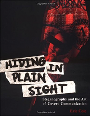 Hiding in Plain Sight cover